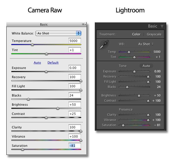 Camera Raw Lightroom Editing foto